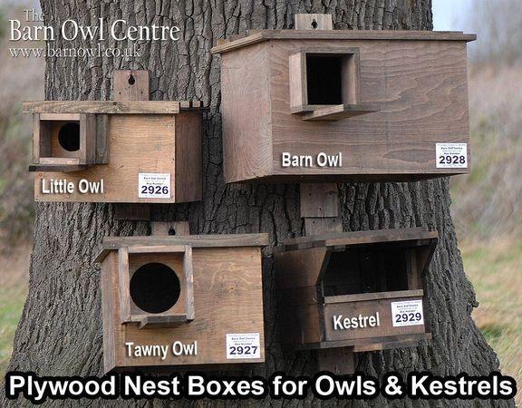 2747 best Barn Birdhouses images on Pinterest | Birdhouse ...