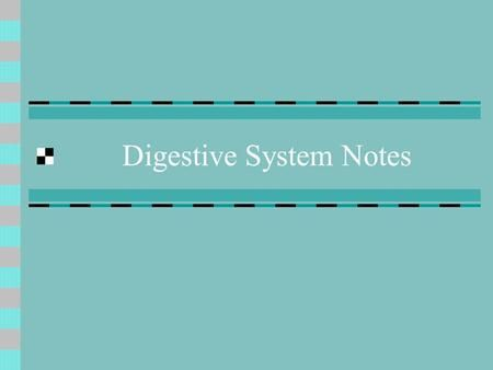 Digestive System Notes. Mouth Carbohydrate digestion begins here! Ingestion = eating.