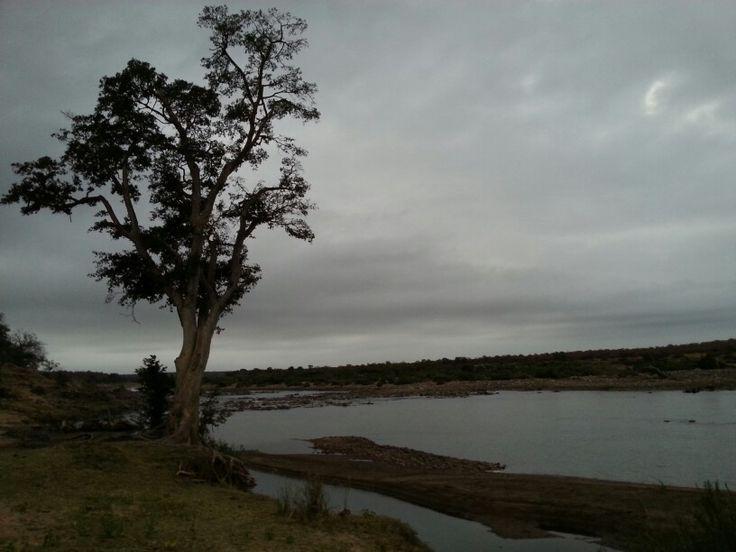 Olifants river Kruger National Park