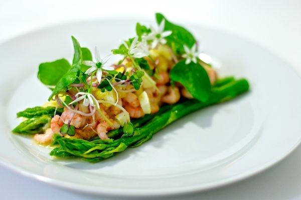 Grilled asparagus, baltic shrimps, egg, vinaigrette and fresh herbs