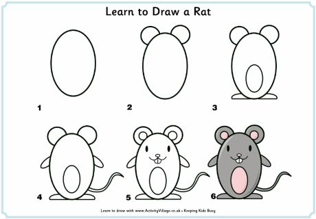 Learn to Draw a Rat