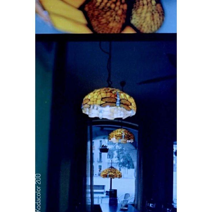 #ishootfilm  #filmphotography #filmisnotdead #35mm  #35mmfilm #filmcamera #believeinfilm #istillshootfilm #filmisalive #shotonfilm #filmcommunity #keepfilmalive #filmfeed #filmphotographic  #analogue #analoguevibes #analog #analogfeatures #analogphotography  #PentaxP30n #Kodacolor200 #Lomography