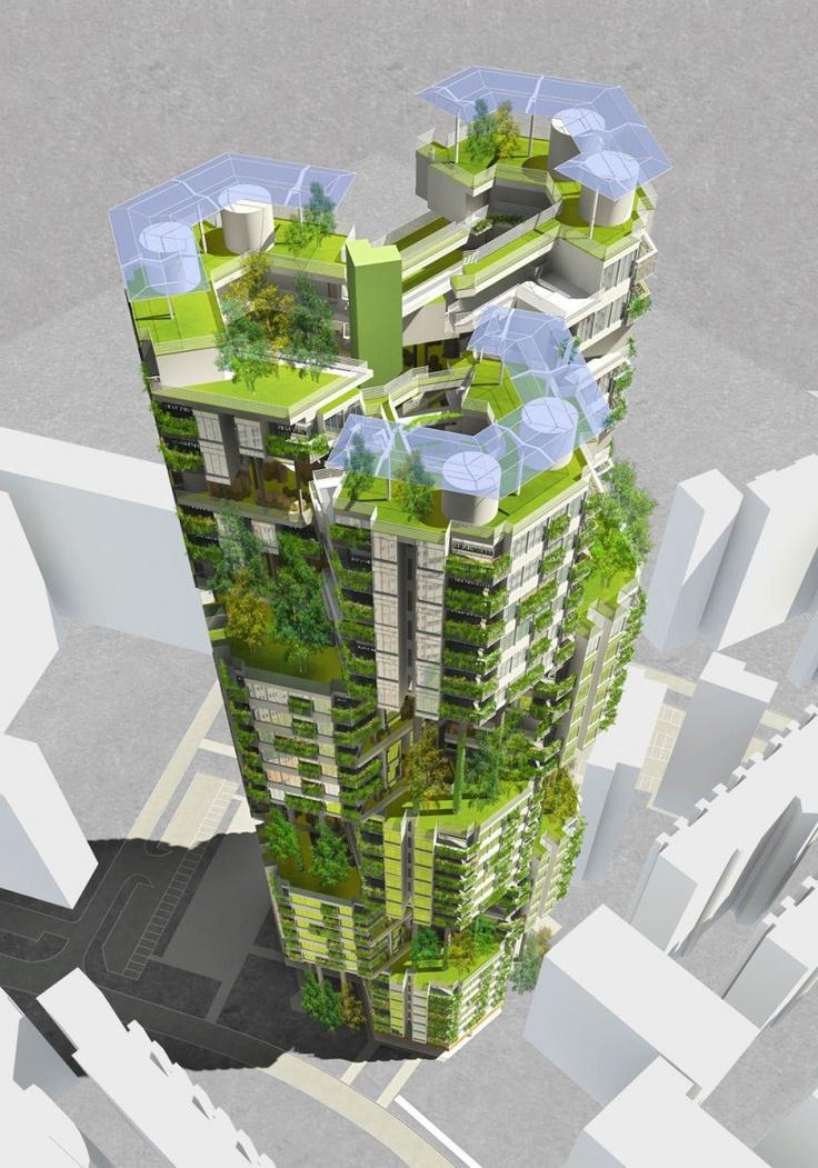 истории строительство зеленые картинки вскоре заслужила