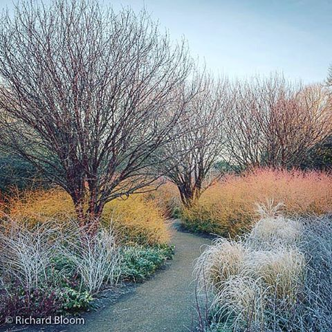 Instagram media by richardbloomphoto - #frostymorning at #angleseyabbey…