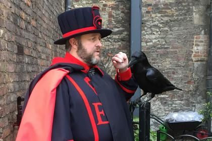 13 Behind-the-Scenes Secrets From the Ravenmaster at the Tower of London