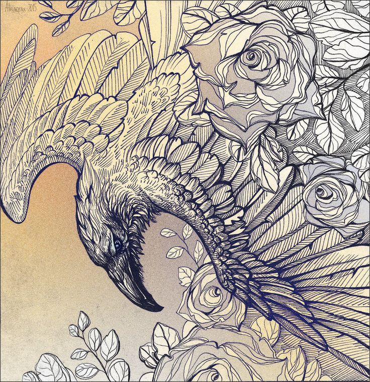 "Stunning Illustration....So FULL of Light!!! ""Raven and roses"" by Alaiaorax"