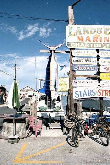 136 best images about florida keys fishing on pinterest for Key west fishing trips