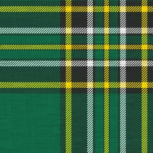 Irish National Tartan. The original Irish National Tartan™ has proven to be very popular, many of you may not realize that House of Edgar woolen mills is the registered owner of the Irish National Tartan™ name and design. It was designed in 1996 by Polly Wittering for House of Edgar.