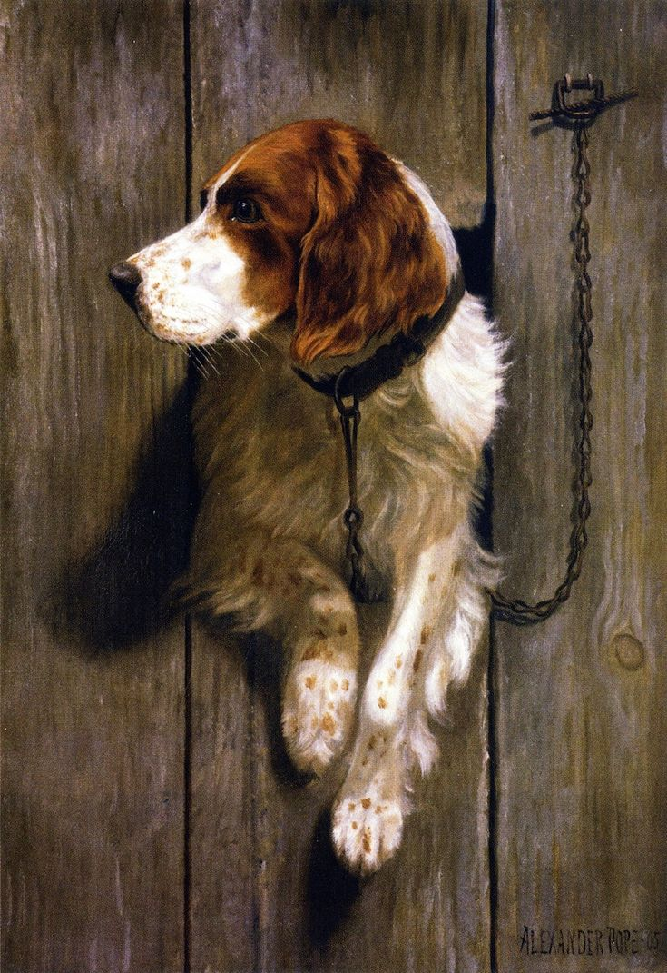 Alexander pope jr american 1849 1924 at the kennel for Painting of your dog