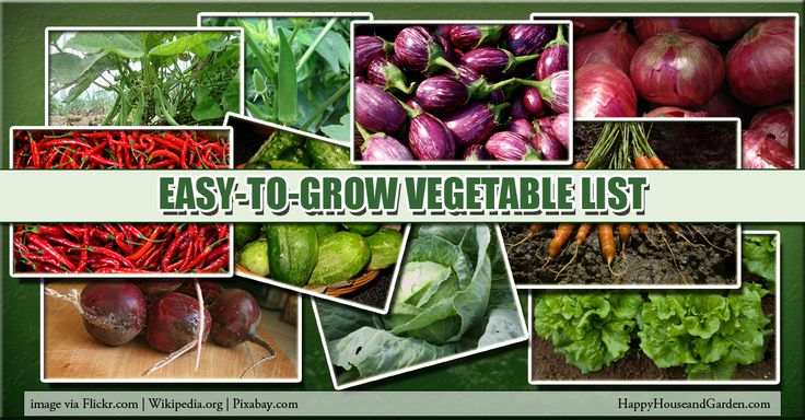 17 Best Images About Herb And Vegetable Gardening 640 x 480