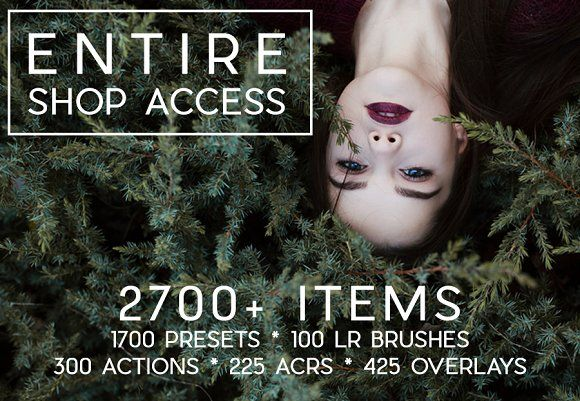 2700+ ITEMS Entire Shop Access by LOU&MARKS on @creativemarket