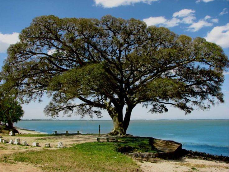 Praia das Nereidas, São Lourenço do Sul – Rio Grande do Sul