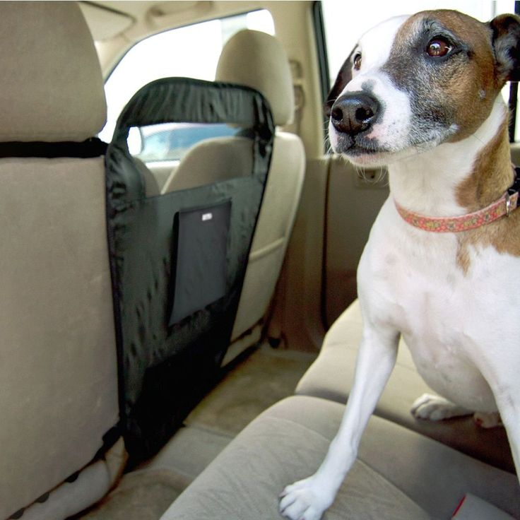 Animal Planet Back Seat Pet Barrier