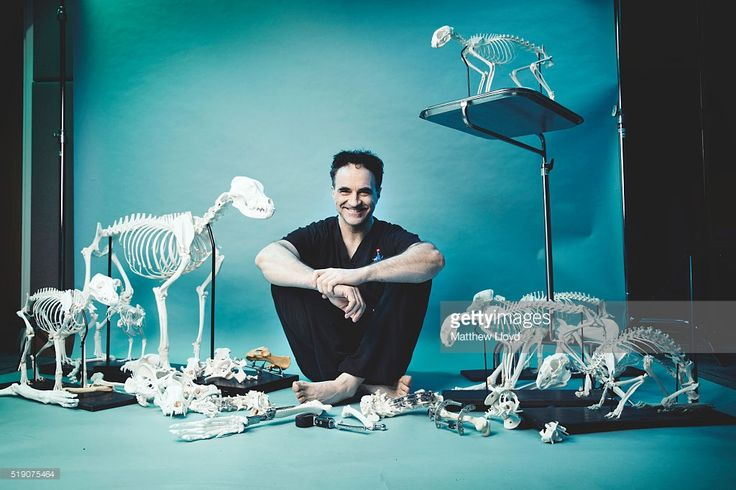 Vet and tv presenter Noel Fitzpatrick is photographed for November 4, 2015 in London, England.