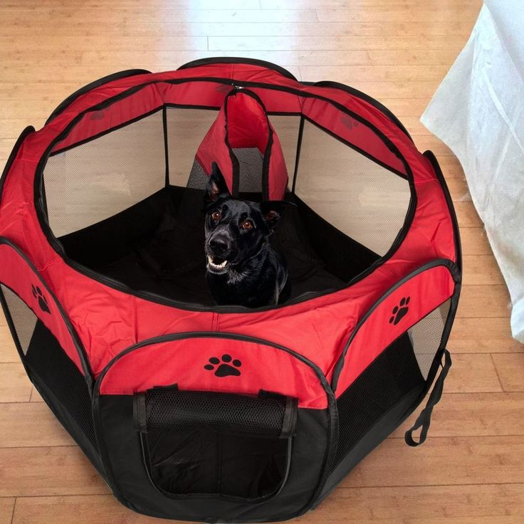 Small Pet Carrier Portable Dog Cat Soft Folding Lightweight Playpen Crate Red | Pet Supplies, Dog Supplies, Fences & Exercise Pens | eBay!