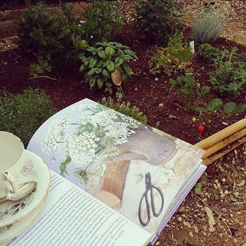 """Nel giardino di eugenia Una sedia, un buon tè, le mie aromatiche e """"buon gardening""""... oggi risveglio lento e carico di poesia! @aboutgarden è un libro strepitoso, complimenti!"""