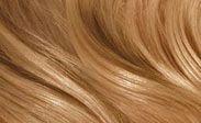 Hair Color Chart: Beeline Honey