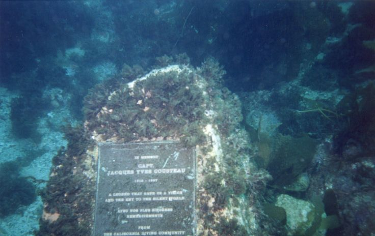 Cousteau Monument Found Off Of Casino Point Dive Park In