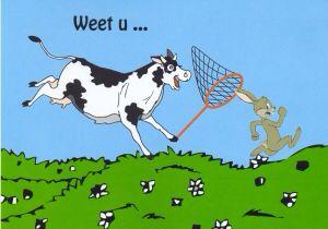Hoe een koe een haas vangt. Een oplossing voor een schijnbaar onmogelijk oplosbaar probleem.