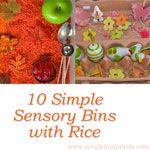 10 Simple Sensory Bins with Rice
