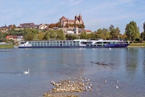 Neuf-Brisach fait face à Breisach am Rhein de l'autre côté du Rhin. Des croisières sont organisées, avec embarquement du côté allemand, pour découvrir le fleuve. En novembre, la croisière vous emmène pendant deux heures sur le Vieux-Rhin, le canal latéral du Rhin, avec passage par l'écluse de Vogelgrun et du port de Breisach et Neuf-Brisach.