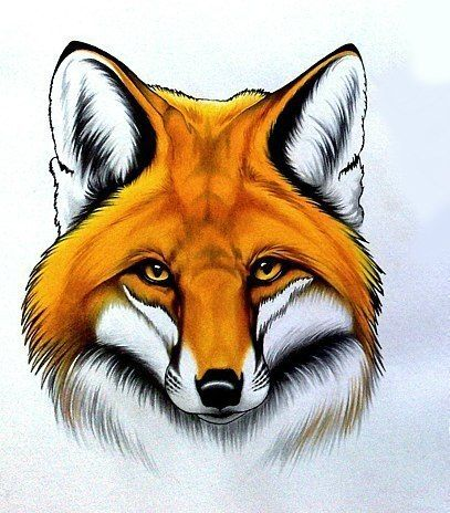 Fox Head Tattoo Idea