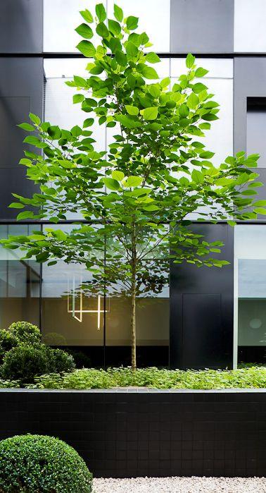 .. Tim Van de Velde architecture portfolio