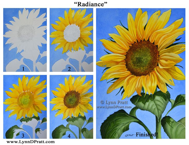 "Step by step, how to art, watercolor painting by Lynn D. Pratt ""Radiance"". sunflower, summer, flower, prints available"