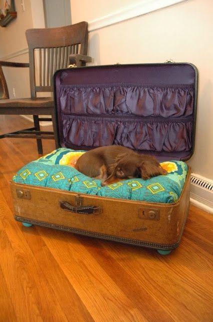HOME & GARDEN: 23 lits en valises recyclées pour nos amis les animaux