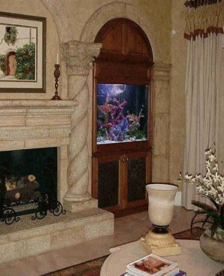 410 best aquarium world images on pinterest aquarium ideas fish tanks and fish aquariums - Decorative fish tanks for living rooms ...