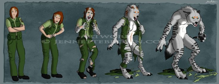 Wolf Transformation Sequence Katlin Transfor...