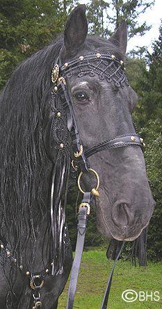 Baroque Horse Tack