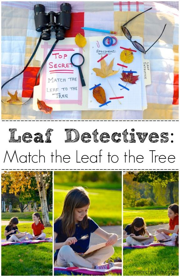 Autumn Nature Activity - Leaf Detectives! #kids #nature