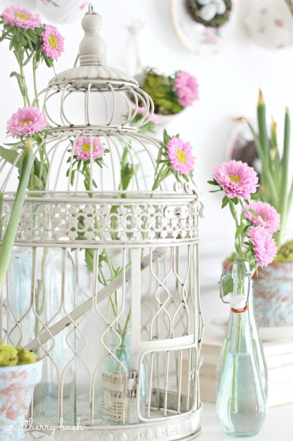 Beautiful birdcage as decor