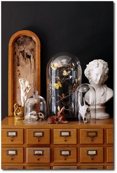 Collected items. Cloche. Bust. Apothecary. Specimens. Cabinets of curiosities.