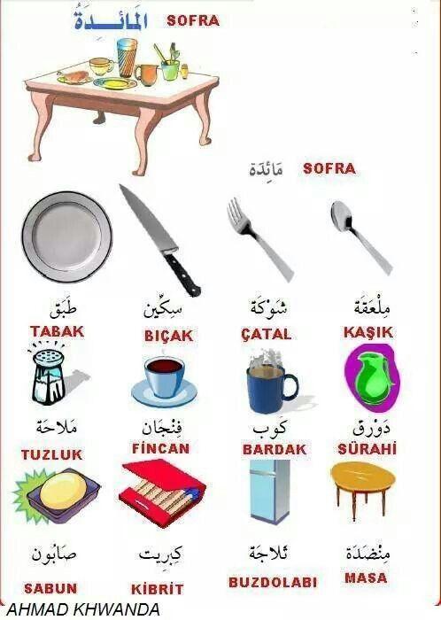 Arabic and Turkish