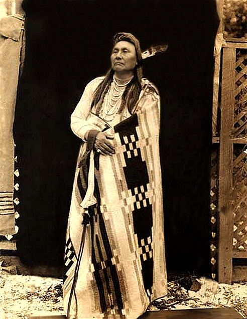 Nez Perce Chief Joseph, 1901. was hard to capture because he had fast horses.  The horses were some of the original horses brought over by the Spanish.