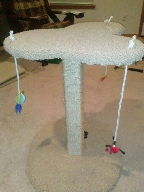 17 best images about diy homemade cat toys on pinterest