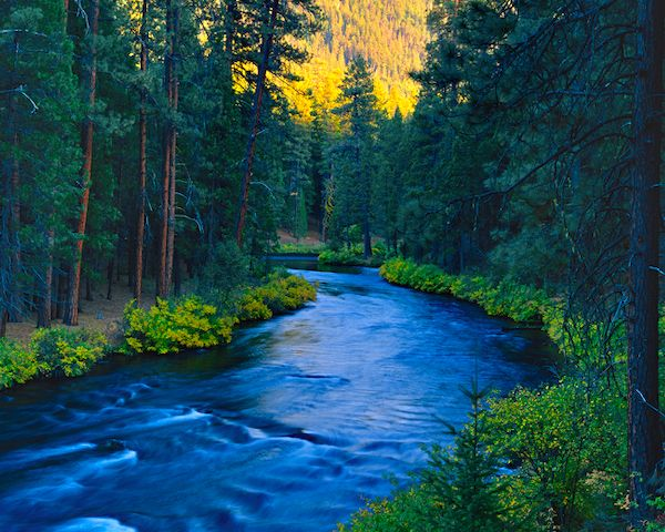 Metolius River, Camp Sherman, Oregon - By far one of the most beautiful and tranquil spots I have ever visited.  100% in my element while on the river fishing - Nirvana!