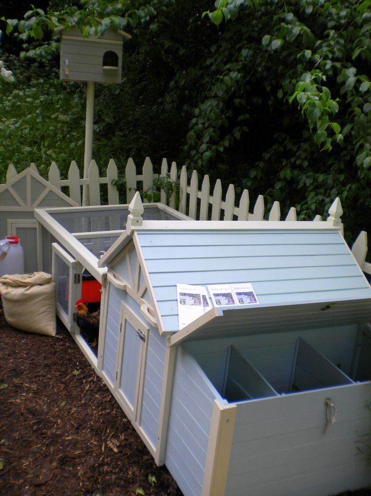 106 Best Hen House Ideas! Images On Pinterest Animals Backyard