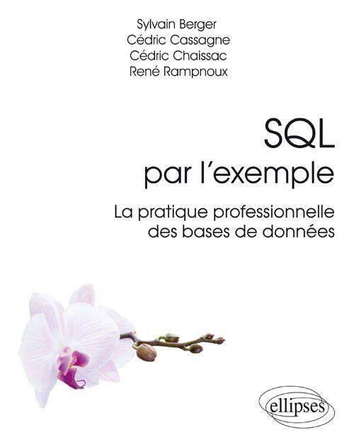 SQL par l'exemple, La pratique professionnelle des bases de données http://catalogue-bu.univ-lemans.fr/flora/jsp/index_view_direct_anonymous.jsp?PPN=199586551