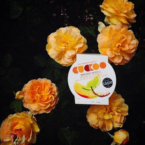The future's bright the future's orange! #orange #colourblocking #flowers #summer #london #birchermuesli #cuckoo #healthy