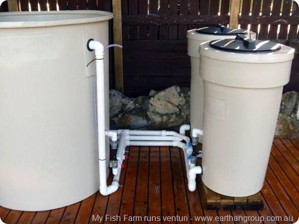 My fish farm runs venturi koi for Fish pond filtration setup