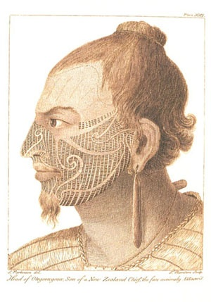 Head of Oregoongoon.   Sydney Parkinson, a Journal of a Voyage to the South Seas in His Majesty's Ship, The Endeavour. London 1773.