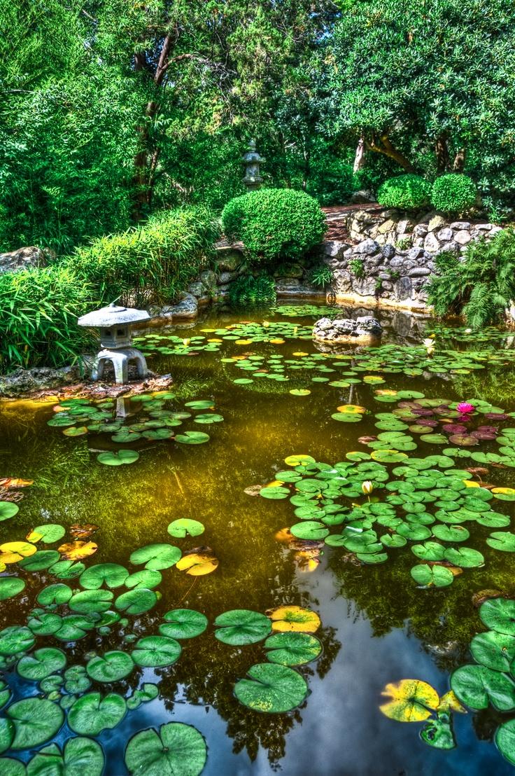Japanese zen gardens with pond - Serenity Reflected Zen Gardenswater Gardensjapanese