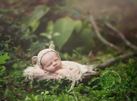 Bear mother baby photographynewborn photographybearsoutdoorsoutdoorbear exteriornewborn picturesoutdoor living