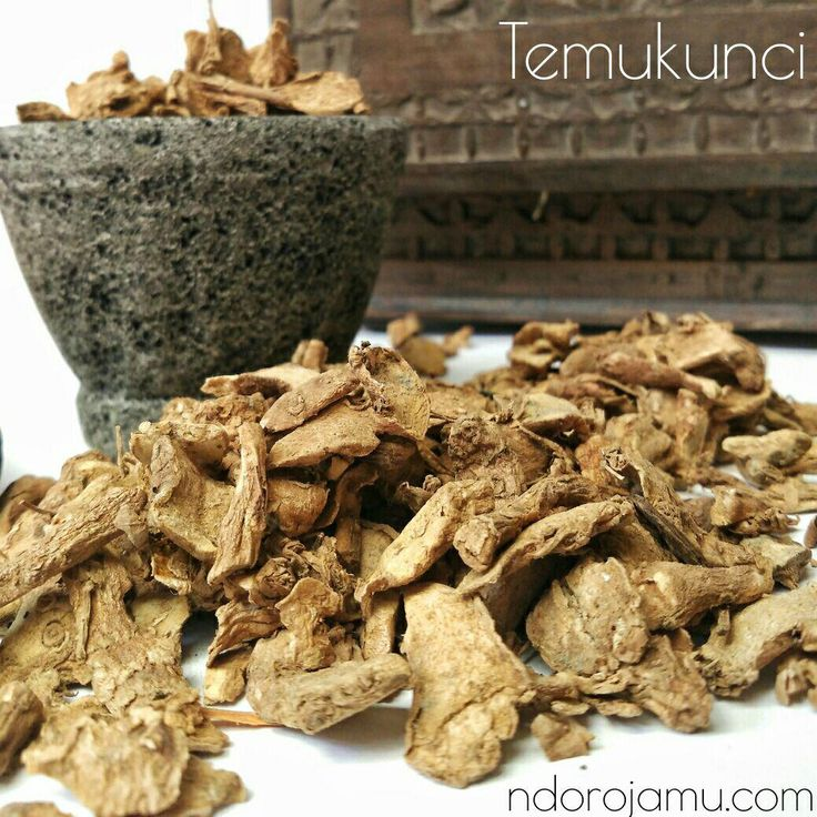 Temu Kunci Herbal Kering
