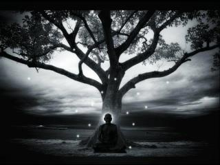"""""""Sometimes, simply by sitting, the soul collects wisdom."""" ~ Zen Proverb ..*"""
