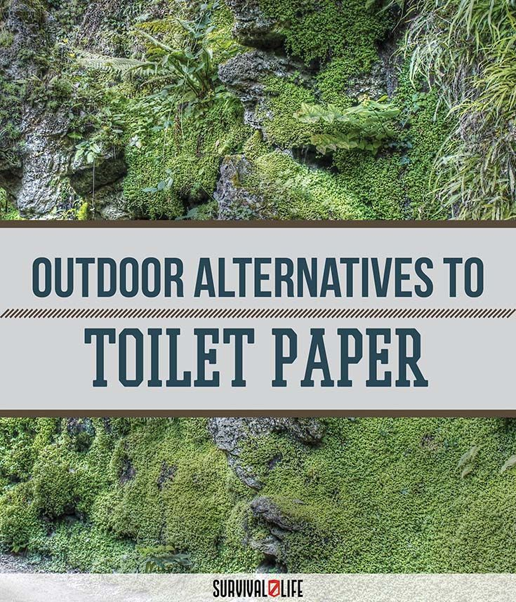 Camping Survival Skills: Wilderness Survival Guide: Outdoor Toilet Paper