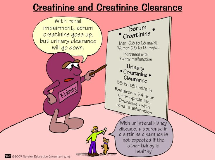 Creatinine Serum creatinine levels provide a more sensitive measure of renal damage than do blood urea nitrogen levels. Creatinine is a nonprotein end product of creatinine metabolism that appears in serum and amounts proportional to the body's muscle mass.